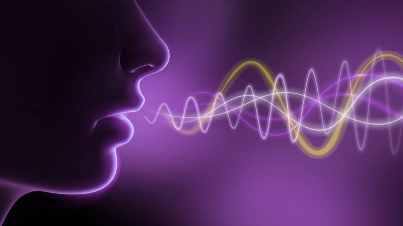 De la voz y laconexión